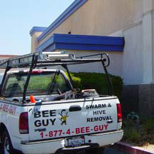 Murrieta Bee Removal Guys Service Truck